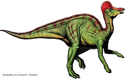 dinosaurs with crests
